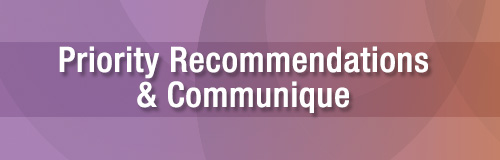 Priority Recommendations & Communique