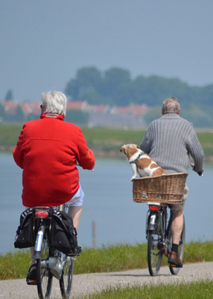 Elderly people on bicycles