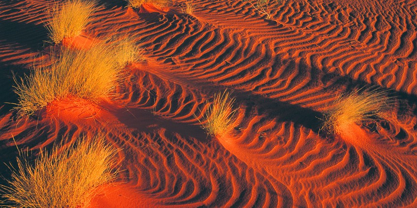 Red sand and spinifex