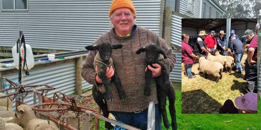 Martin P Butler with ewes