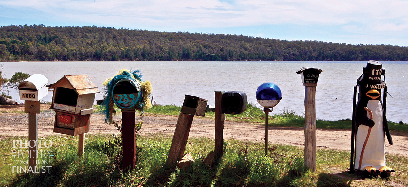 Stephen Batten - Mailbox sentinels.