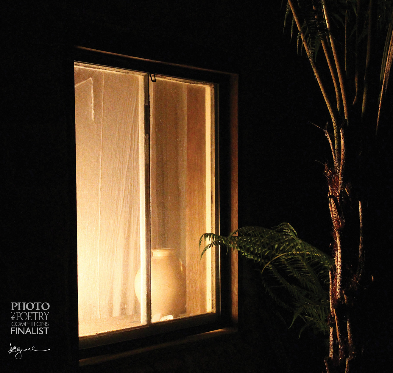 Steve Gorrell - Evening Light - Window at night - the warm, inviting glow of a rural home.