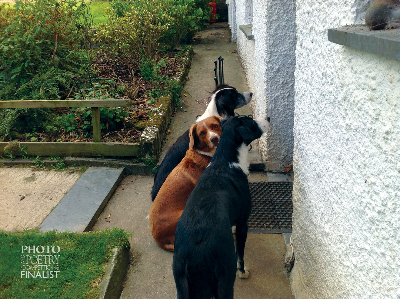 Irene Mills - Friends waiting for dinner.