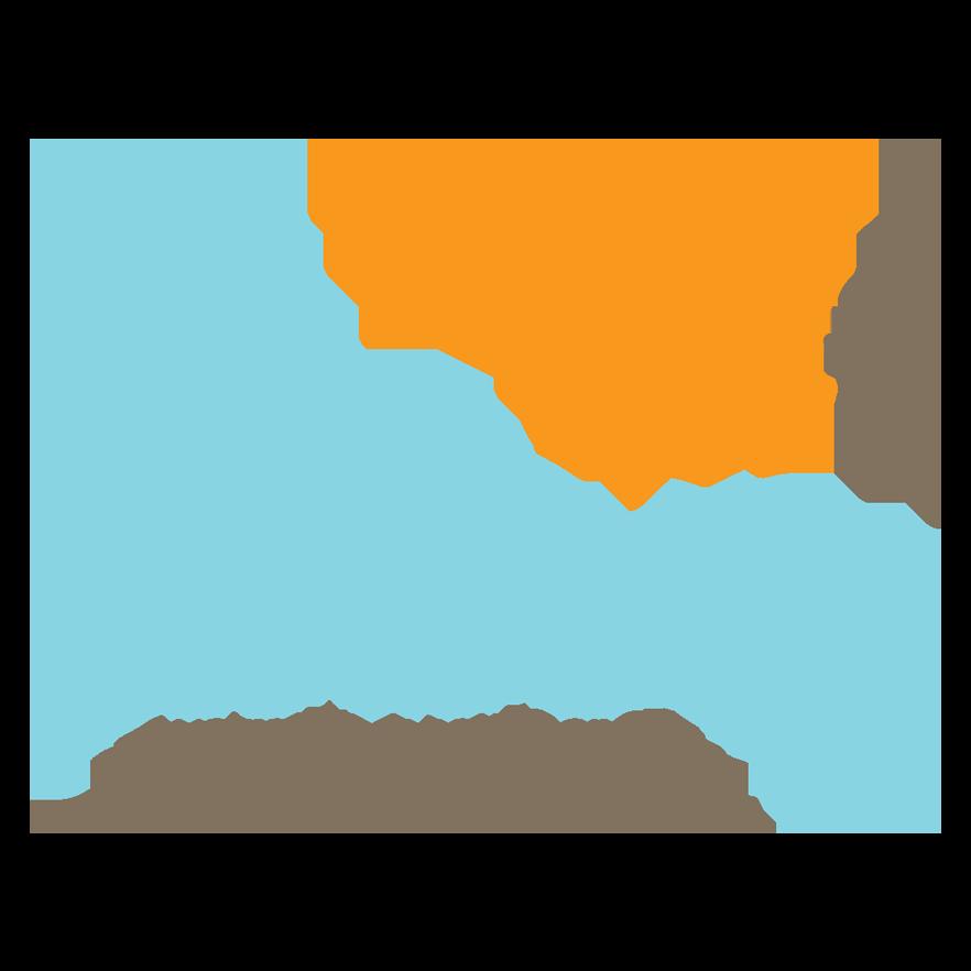 Australian Healthcare and Hospitals Association logo