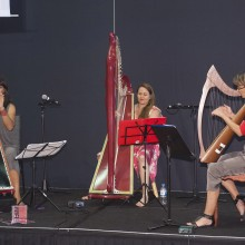 Not just for angels! Cairns Harp Collective recital wowed delegates at the exhibitor reception.