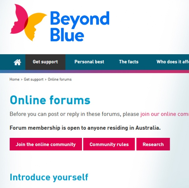 Online forum screen shot