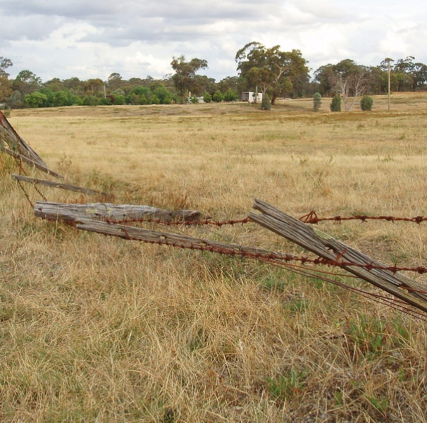 Rural paddock with barbed wire fence