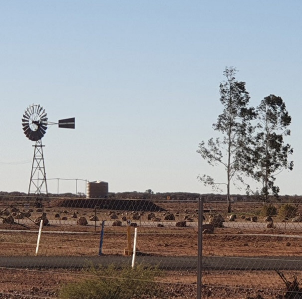 Outback wind pump - A quiet, peaceful day at Charleville, Queensland (photo: Tessa Li Chyin Lim)