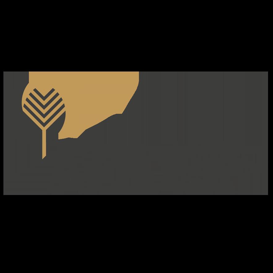 APS RRIG logo