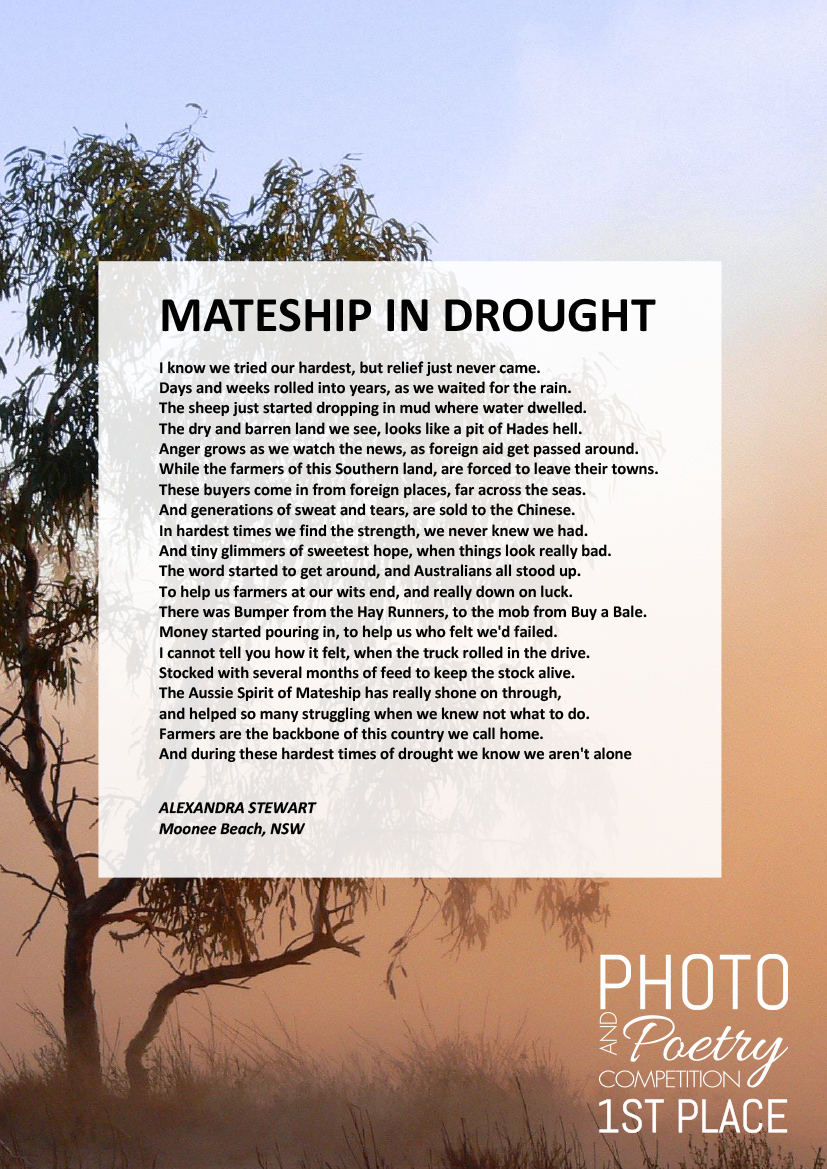 MATESHIP IN DROUGHT - ALEXANDRA STEWART, Moonee Beach, NSW