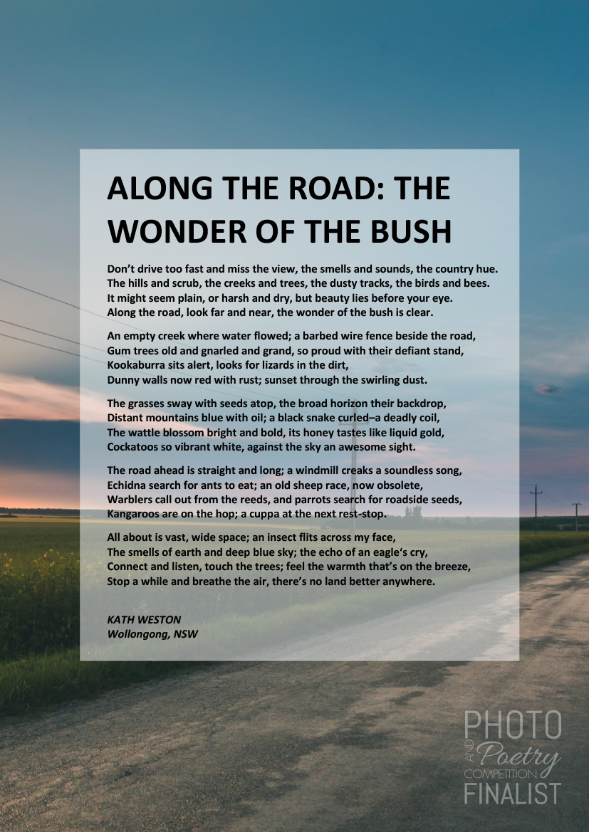 ALONG THE ROAD: THE WONDER OF THE BUSH - KATH WESTON, Wollongong, NSW